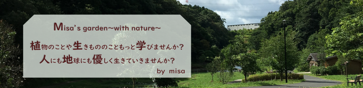 Misa's garden~with nature~