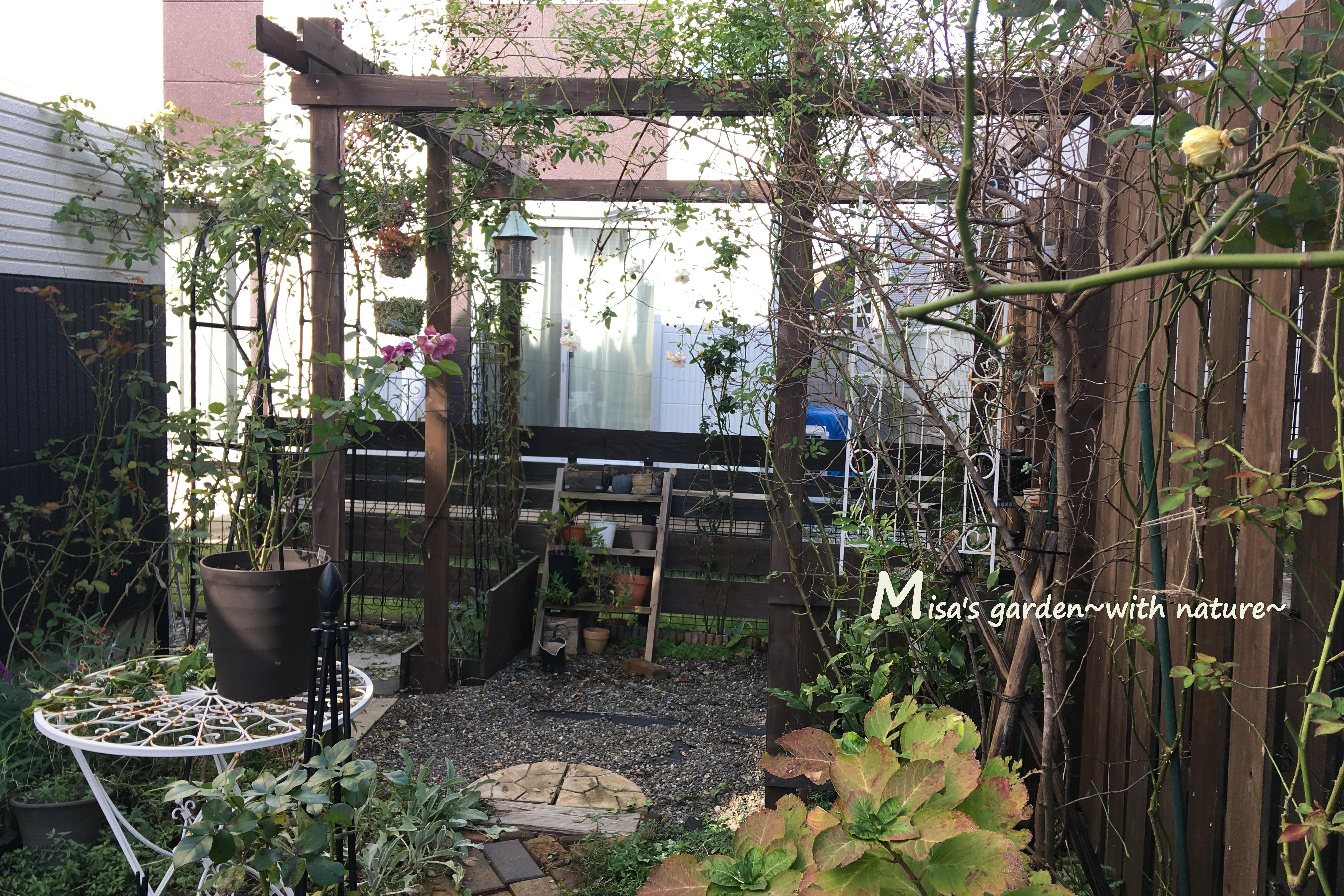 misa's garden