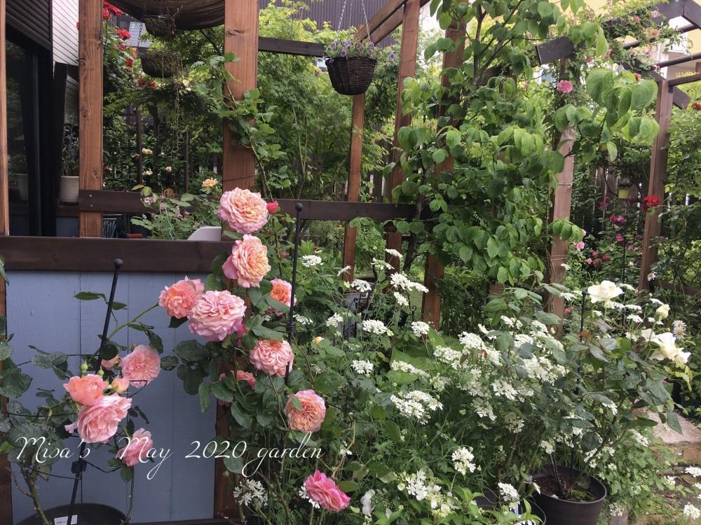 玄関横の花壇