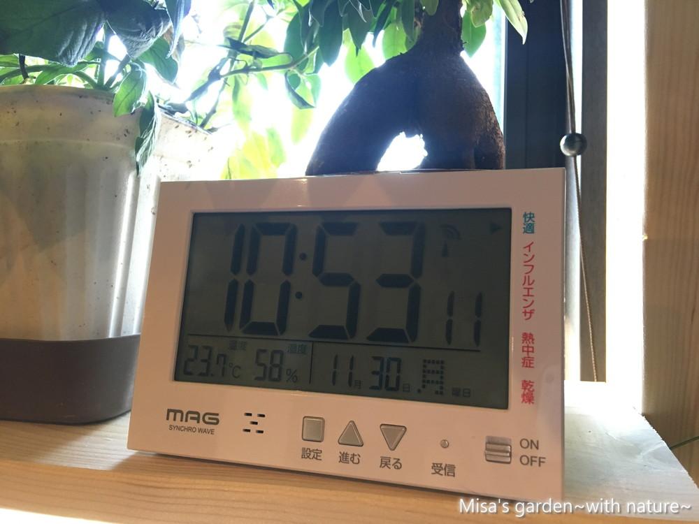 ランの温度計201130