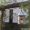 巣箱とローズヒップ 191102