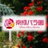 ローズガーデンストリートビュー - 京成バラ園 - Keisei Rose Garden