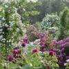 ガーデンマップ - 佐倉草ぶえの丘バラ園 The City of Sakura Rose Garden